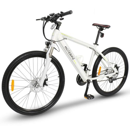 Ebenz MTB electric bike